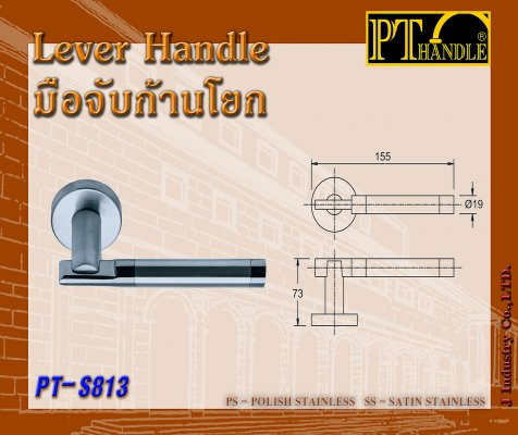 Lever Handle (PT-S813)