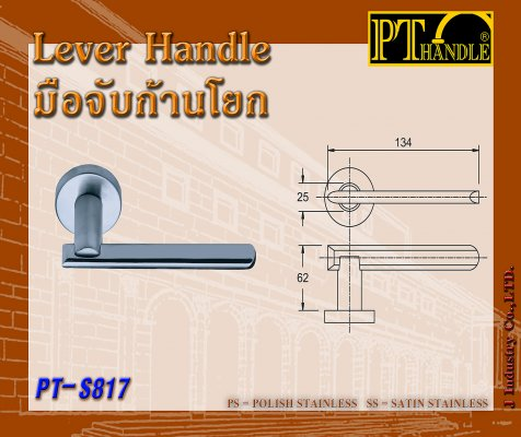 Lever Handle (PT-S817)